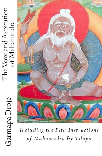 The Vow and Aspiration of Mahamudra: Including the Pith Instructions of Mahamudra by Tilopa, Compiled, Edited and with Commentary by Marilynn Hughes